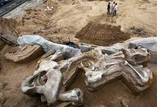 Mammoth-Serbia